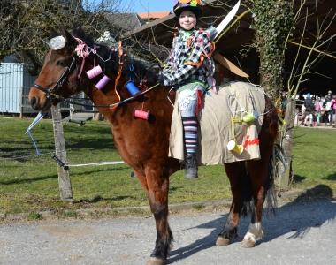 Ehemalige Pferde & Ponys